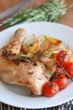 Pollo con i chip Immagine Stock