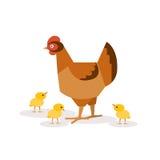Pollo con i polli Illustrazioni di vettore Fotografie Stock Libere da Diritti