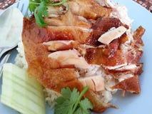 Pollo con la salsa sobre el arroz Imágenes de archivo libres de regalías