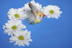 Pollo con las flores Foto de archivo