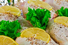 Pollo con las rebanadas del limón Imágenes de archivo libres de regalías