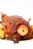 Pollo con le mele immagini stock