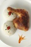 Pollo con riso Fotografie Stock