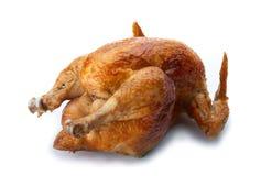 Pollo cotto. fotografia stock libera da diritti