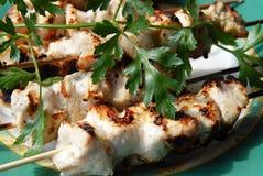 Pollo cotto in salsa Fotografia Stock