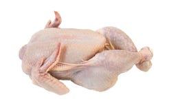 Pollo crudo fotos de archivo