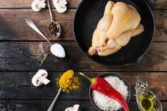 Pollo crudo con condimento e riso Fotografia Stock Libera da Diritti