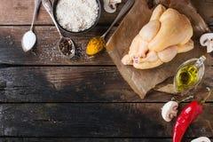 Pollo crudo con el condimento y el arroz Imagen de archivo libre de regalías