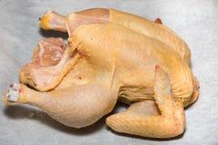 Pollo crudo con il fondo del Libro Bianco Fotografia Stock