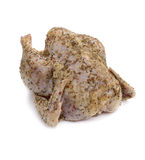 Pollo crudo con le spezie. fotografie stock libere da diritti