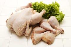 Pollo crudo con prezzemolo Fotografia Stock
