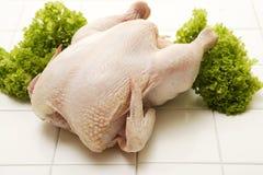Pollo crudo con prezzemolo Immagine Stock