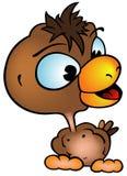 Pollo de Brown Foto de archivo