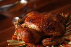 Pollo de carne asada en vehículo imagen de archivo libre de regalías