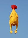 Pollo de goma Fotografía de archivo