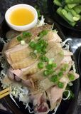 Pollo de Hainan fotos de archivo