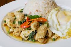 Pollo de la albahaca del arroz y del chile con el huevo frito Imagen de archivo