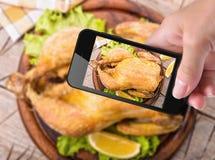 Pollo de la foto Fotografía de archivo