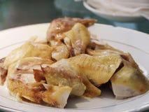 Pollo de la salsa o del vapor del pollo de la ebullición Fotos de archivo libres de regalías