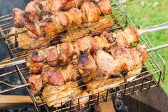 Pollo de los kebabs del pollo en naturaleza Fotos de archivo libres de regalías