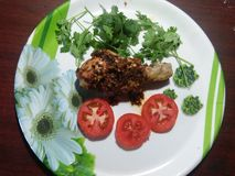Pollo de Madura Tandoori Fotografía de archivo libre de regalías