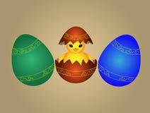 Pollo de Pascua Fotografía de archivo libre de regalías