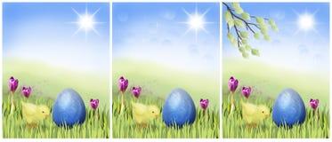 Pollo de Pascua con el huevo azul en un prado asoleado Imagen de archivo