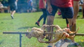 Pollo de Petrovden que asa en un escupitajo del rotisserie del fuego de madera fotos de archivo