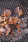 Pollo del Bbq del albaricoque del Chipotle Fotografía de archivo