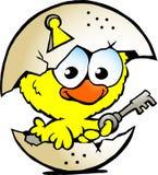 Pollo del bebé que se sienta en cáscara de huevo Imagen de archivo libre de regalías
