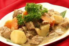 Pollo del curry Imagen de archivo libre de regalías
