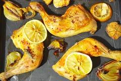 Pollo del limón Imagen de archivo