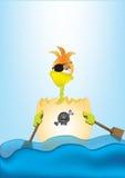 Pollo del pirata Imagen de archivo libre de regalías
