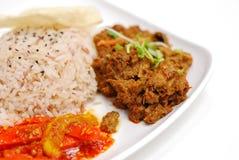 Pollo del rendang del Malay o arroz vegetariano del cordero Foto de archivo