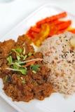 Pollo del rendang del Malay o riso vegetariano del montone Immagine Stock