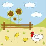 Pollo dell'azienda agricola royalty illustrazione gratis