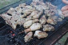 Pollo della carne Immagini Stock