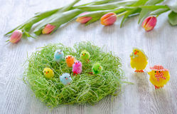 Pollo di Pasqua nel nido e tulipani su di legno Immagini Stock