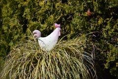 Pollo di plastica Fotografia Stock Libera da Diritti