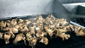 Pollo di tornitura del cuoco unico su una griglia calda del gas video d archivio
