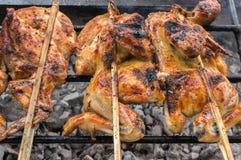 Pollo di torrefazione caldo dello spiedo sullo scaffale arrostito Fotografia Stock Libera da Diritti
