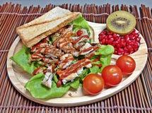 Pollo di torrefazione ed insalata dei pomodori fotografia stock libera da diritti