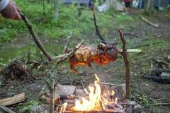 Pollo di torrefazione sopra un fuoco di accampamento Fotografia Stock