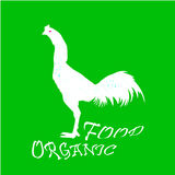 Pollo dibujado mano del animal del campo Letras de la comida Ilustración Fotos de archivo