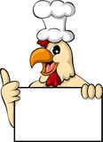Pollo divertido de la historieta con la muestra en blanco Imagen de archivo