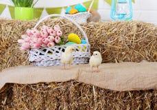Pollo due su un mucchio di fieno Fotografie Stock
