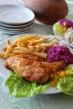 Pollo e chip cotti Fotografia Stock Libera da Diritti