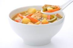 Pollo e verdure cinesi della minestra di pollo Fotografia Stock Libera da Diritti
