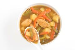 Pollo e verdure cinesi della minestra di pollo fotografia stock