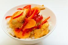 Pollo en el asiático Imagen de archivo libre de regalías